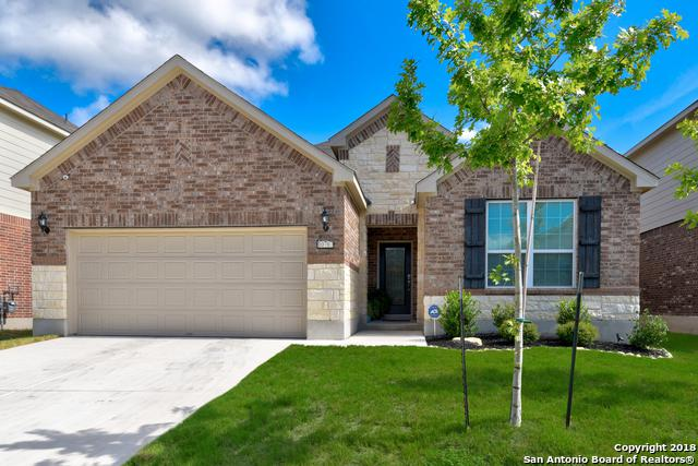 10707 Desert Rock, Helotes, TX 78023 (MLS #1336402) :: Alexis Weigand Real Estate Group