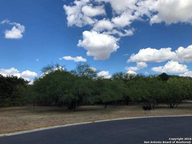 9824 Bode Circle, Garden Ridge, TX 78266 (MLS #1336494) :: Tom White Group