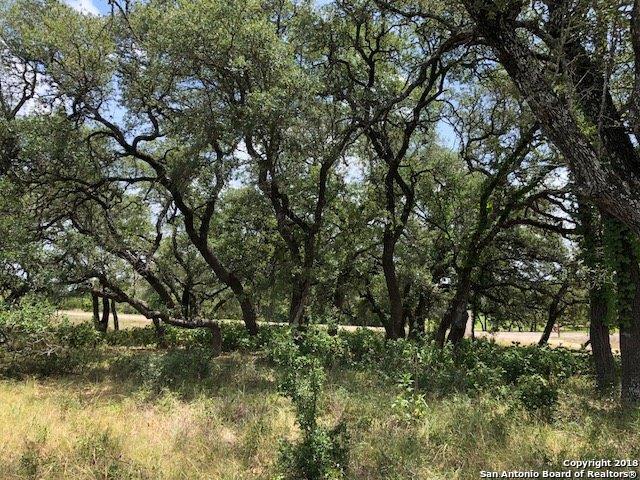1048 John Price St., Blanco, TX 78606 (MLS #1336518) :: Alexis Weigand Real Estate Group