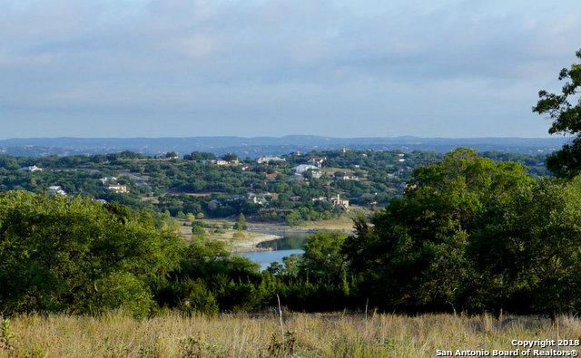 1590 Bella Vista, Canyon Lake, TX 78133 (MLS #1336975) :: Erin Caraway Group