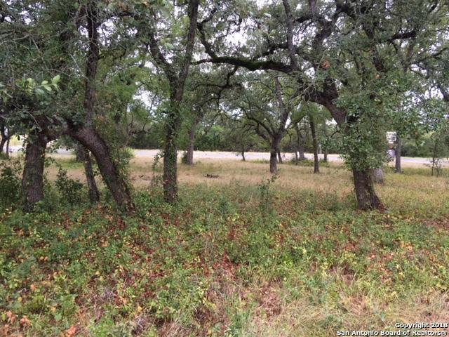 13000 Us Highway 281, Spring Branch, TX 78070 (MLS #1336984) :: The Castillo Group