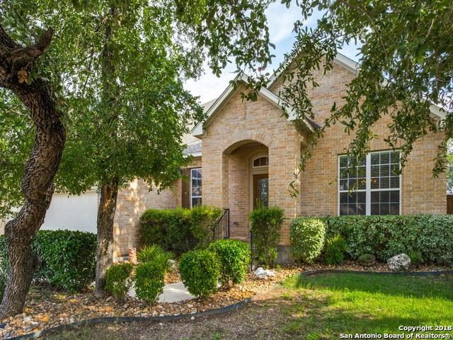 11930 Willacy Trail, San Antonio, TX 78253 (MLS #1337052) :: Exquisite Properties, LLC