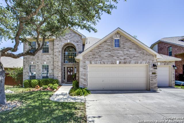 14304 Dona Ana Dr, Helotes, TX 78023 (MLS #1337061) :: Alexis Weigand Real Estate Group