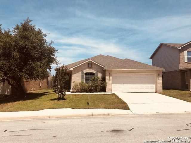 25529 Gold Yarrow, San Antonio, TX 78260 (MLS #1337151) :: Alexis Weigand Real Estate Group