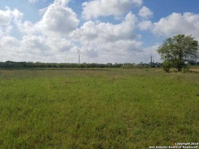 14345 Wisdom Rd, Atascosa, TX 78002 (MLS #1337213) :: Alexis Weigand Real Estate Group