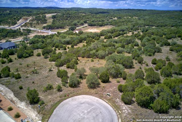 1125 Presidio Ct, Canyon Lake, TX 78133 (MLS #1337398) :: Alexis Weigand Real Estate Group