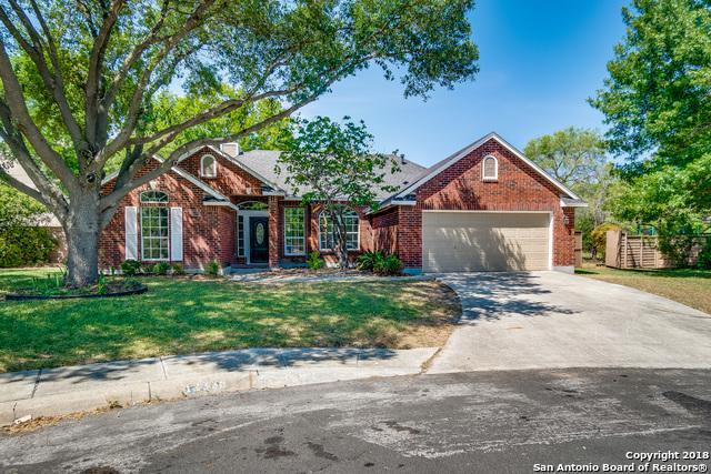 12338 Almendra Dr, San Antonio, TX 78247 (MLS #1337485) :: Alexis Weigand Real Estate Group