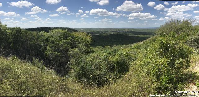 1621 Angolo, New Braunfels, TX 78132 (MLS #1337578) :: Erin Caraway Group