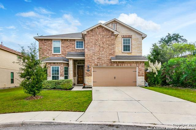 8703 Elkhorn Knoll, Boerne, TX 78015 (MLS #1337743) :: The Castillo Group