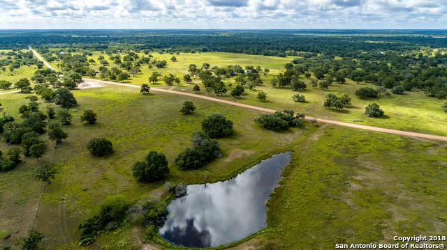 3445 Cattle Guard Rd, Yoakum, TX 77995 (MLS #1337748) :: Alexis Weigand Real Estate Group