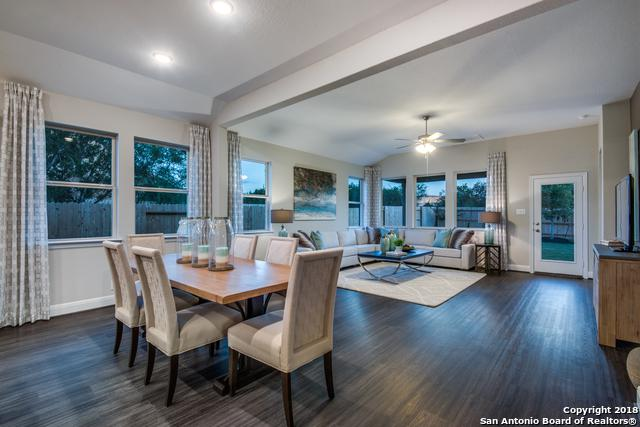 13917 Bellows Path, San Antonio, TX 78253 (MLS #1337818) :: Exquisite Properties, LLC