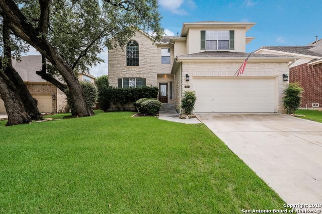 10 Texas Laurel, San Antonio, TX 78256 (MLS #1337821) :: Alexis Weigand Real Estate Group