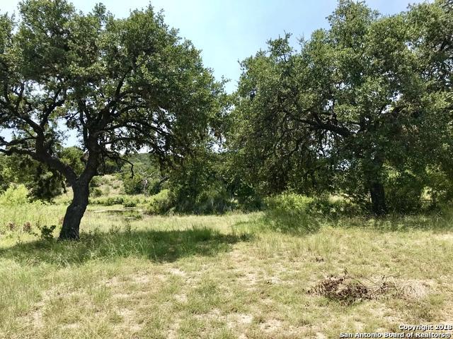 LOT 17A Hills Of Bandera, Bandera, TX 78003 (MLS #1337854) :: Magnolia Realty