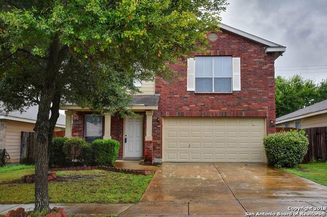 10722 Pony Mesa, San Antonio, TX 78254 (MLS #1337960) :: Alexis Weigand Real Estate Group