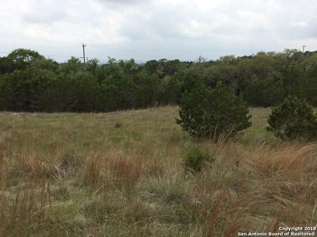 948 Primrose Path, Canyon Lake, TX 78133 (MLS #1338258) :: Alexis Weigand Real Estate Group