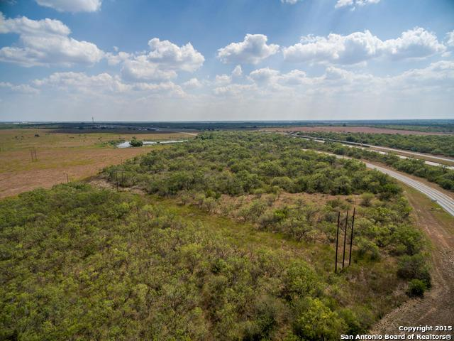 TBD LEAL ROAD & Riggins Rock Pkwy--23+- Acres, Pleasanton, TX 78064 (MLS #1338544) :: The Castillo Group