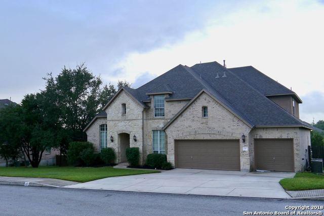 47 Gazelle Field, San Antonio, TX 78258 (MLS #1338599) :: Alexis Weigand Real Estate Group