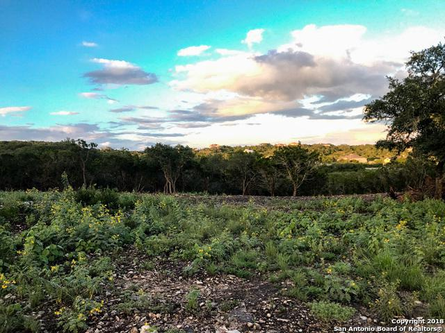 LOT 167 County Road 2814, Mico, TX 78056 (MLS #1338727) :: Magnolia Realty