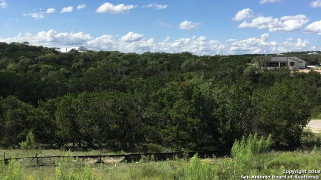 TBD Capitare, New Braunfels, TX 78132 (MLS #1339159) :: Alexis Weigand Real Estate Group