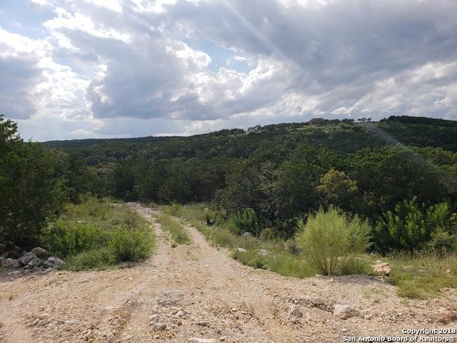 LOT 16 BLOCK 4 Pr 2776, Mico, TX 78056 (MLS #1339230) :: The Castillo Group