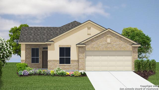 2196 New Castle, New Braunfels, TX 78130 (MLS #1339439) :: Alexis Weigand Real Estate Group
