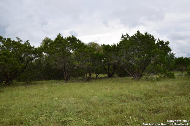 17 X Rio Azule, Pipe Creek, TX 78063 (MLS #1339513) :: Exquisite Properties, LLC