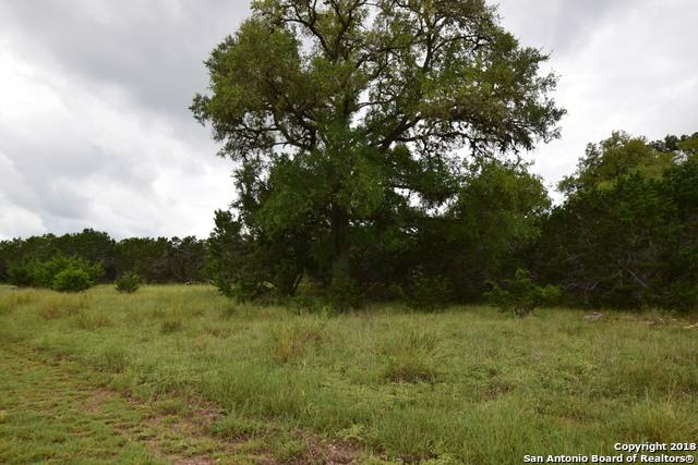 1 G Rio Azule, Pipe Creek, TX 78063 (MLS #1339522) :: Exquisite Properties, LLC