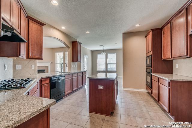 719 Piazza Pl, San Antonio, TX 78253 (MLS #1339578) :: Alexis Weigand Real Estate Group