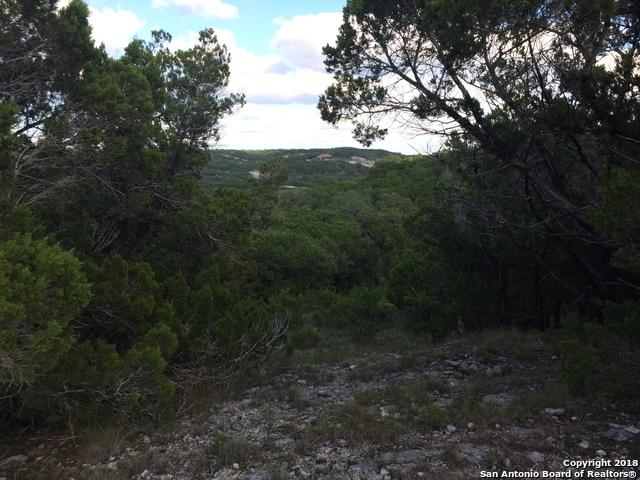 1237 Primrose Path, Canyon Lake, TX 78133 (MLS #1339651) :: ForSaleSanAntonioHomes.com