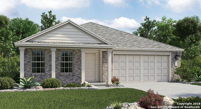 2918 Daisy Meadow, New Braunfels, TX 78130 (MLS #1339737) :: Alexis Weigand Real Estate Group