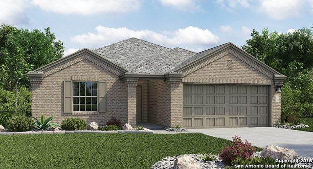 2922 Daisy Meadow, New Braunfels, TX 78130 (MLS #1339742) :: Alexis Weigand Real Estate Group