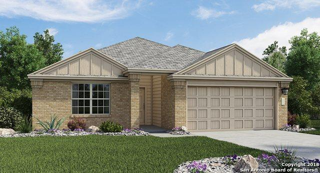 2927 Daisy Meadow, New Braunfels, TX 78130 (MLS #1339745) :: Alexis Weigand Real Estate Group
