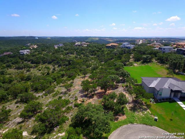 19314 Terra Brook, San Antonio, TX 78255 (MLS #1340131) :: Alexis Weigand Real Estate Group