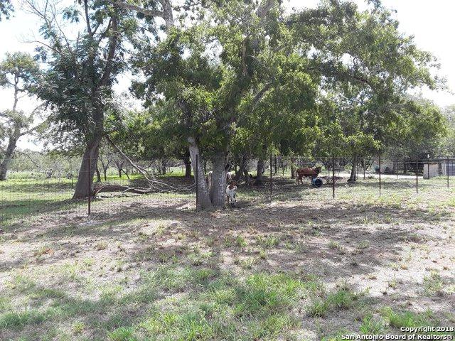 1254 Rutledge Rd, Poteet, TX 78065 (MLS #1340272) :: Alexis Weigand Real Estate Group