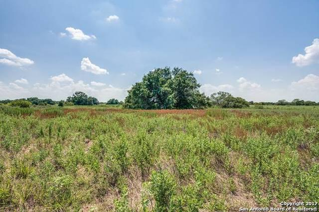 21316 Lamm Rd, Elmendorf, TX 78112 (MLS #1340416) :: Alexis Weigand Real Estate Group