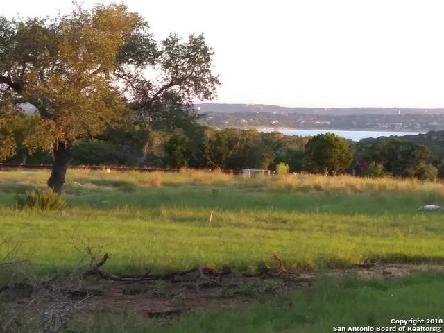 1650 Lake Ridge Blvd, Canyon Lake, TX 78133 (MLS #1340556) :: Magnolia Realty