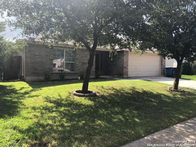4114 Chinkapin Oak, San Antonio, TX 78223 (MLS #1340769) :: Exquisite Properties, LLC