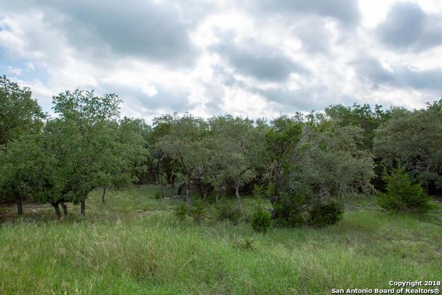 109 Desert Flower, Spring Branch, TX 78070 (MLS #1341058) :: Magnolia Realty