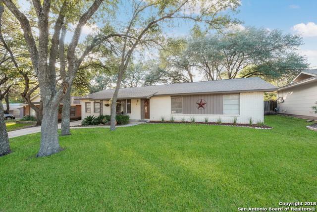 11015 Auldine Dr, San Antonio, TX 78230 (MLS #1341119) :: Tom White Group