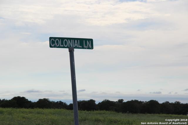233 Colonial Ln, La Vernia, TX 78121 (MLS #1341145) :: ForSaleSanAntonioHomes.com