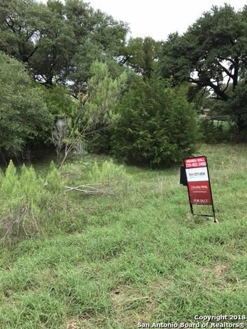 345 Long Meadow, Spring Branch, TX 78070 (MLS #1341159) :: Magnolia Realty