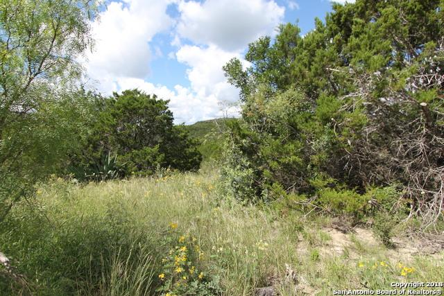 3065 County Road 2704, Mico, TX 78056 (MLS #1341238) :: Alexis Weigand Real Estate Group