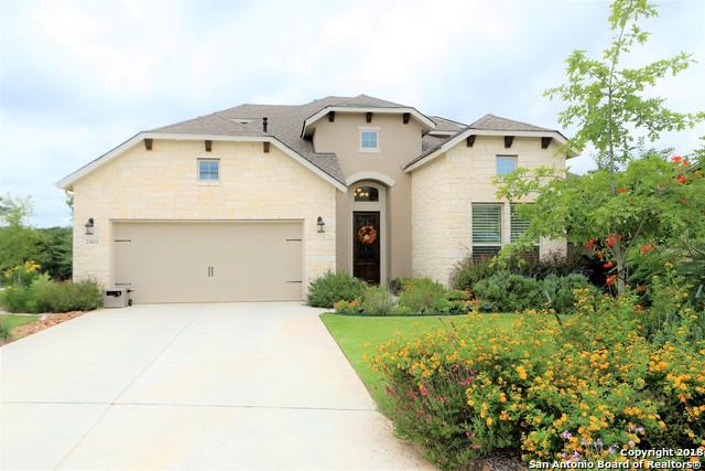 23011 Diamante, San Antonio, TX 78261 (MLS #1341337) :: Alexis Weigand Real Estate Group