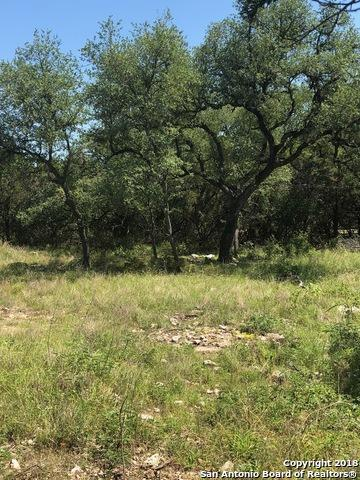2644 Trophy Pt, New Braunfels, TX 78132 (MLS #1341382) :: Alexis Weigand Real Estate Group