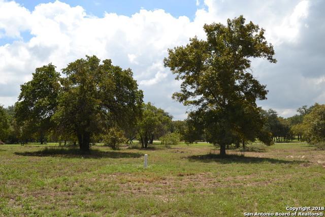114 County Road 7725, Natalia, TX 78059 (MLS #1341784) :: Exquisite Properties, LLC