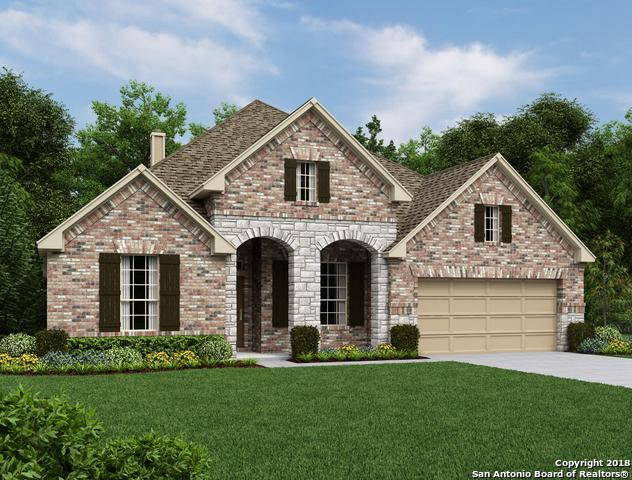 28819 Cherry Valley, San Antonio, TX 78260 (MLS #1341890) :: The Suzanne Kuntz Real Estate Team