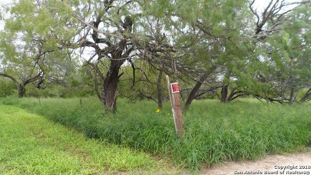 163 County Road, Elmendorf, TX 78112 (MLS #1341902) :: Exquisite Properties, LLC
