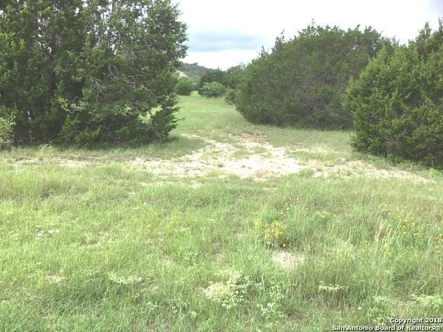 2111 Senora Ridge, Canyon Lake, TX 78133 (MLS #1341956) :: Magnolia Realty
