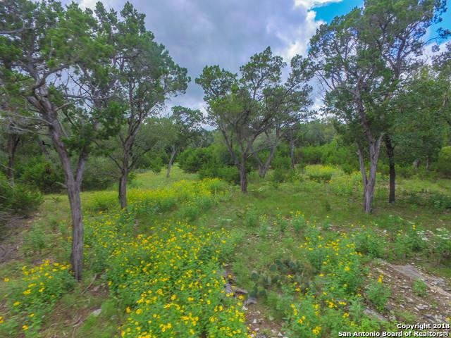 LOT 26 Riverwood, Boerne, TX 78006 (MLS #1342039) :: Magnolia Realty