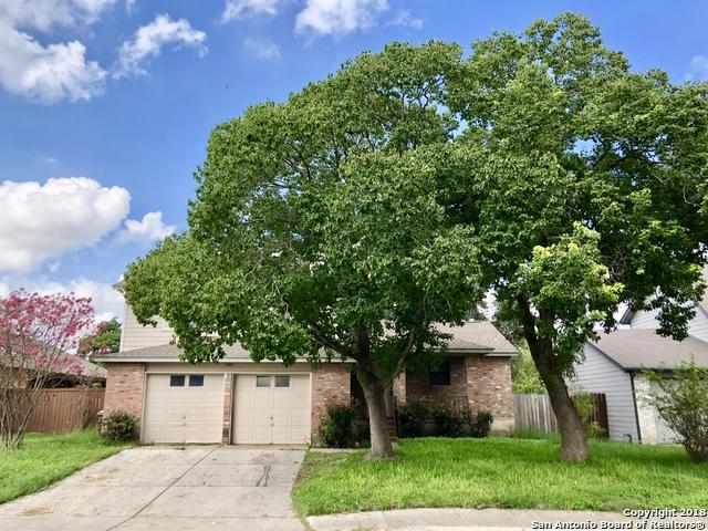 11411 Bear Paw Path, San Antonio, TX 78245 (MLS #1342121) :: Erin Caraway Group
